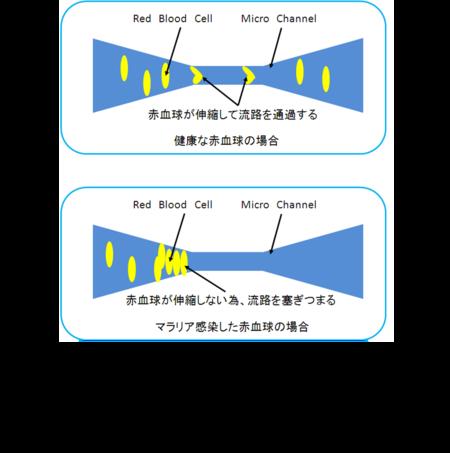 Nano2012watanabe02